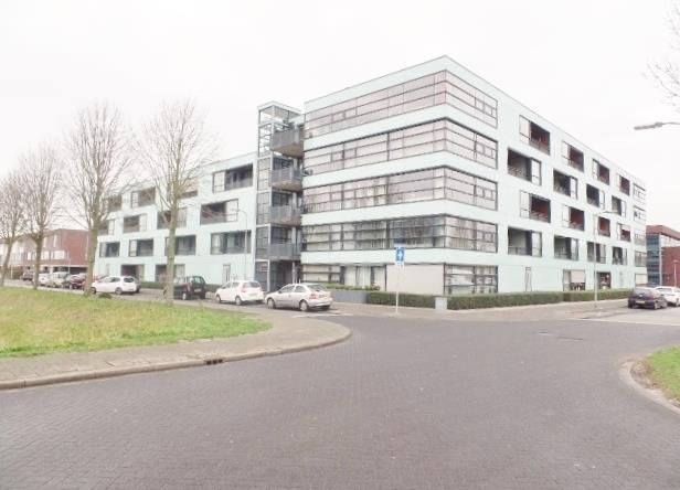 Sterrenkroos, Breda