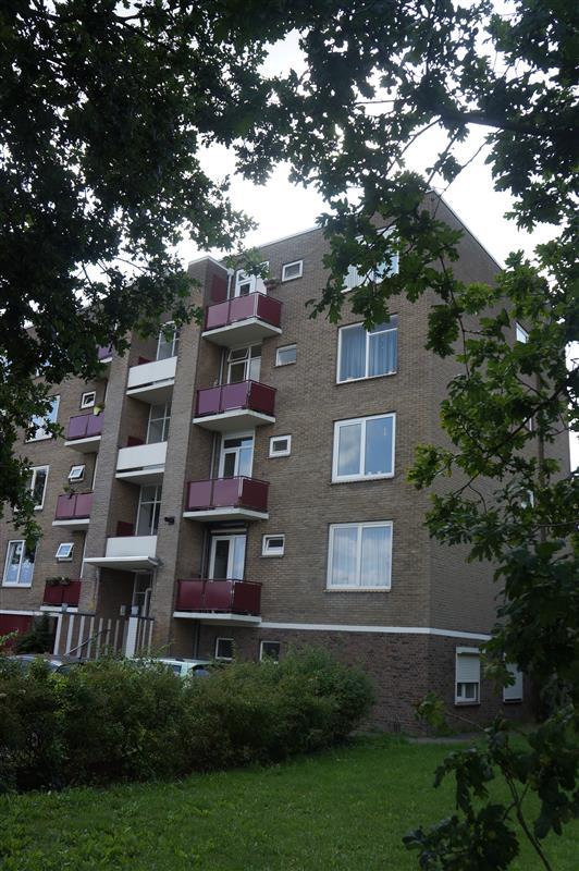 Bakenbergseweg, Arnhem