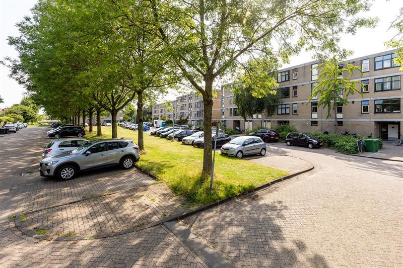 Narcisplantsoen, Haarlem
