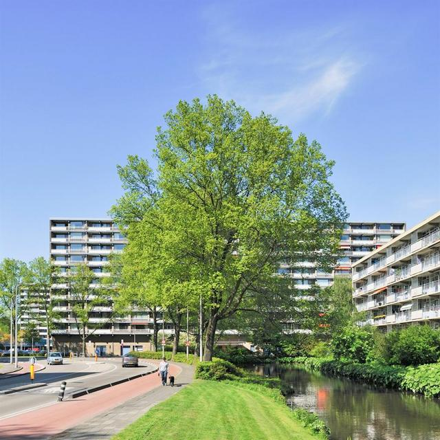 Groenhof, Amstelveen
