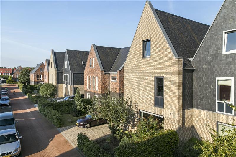 Timmerhout, Arnhem