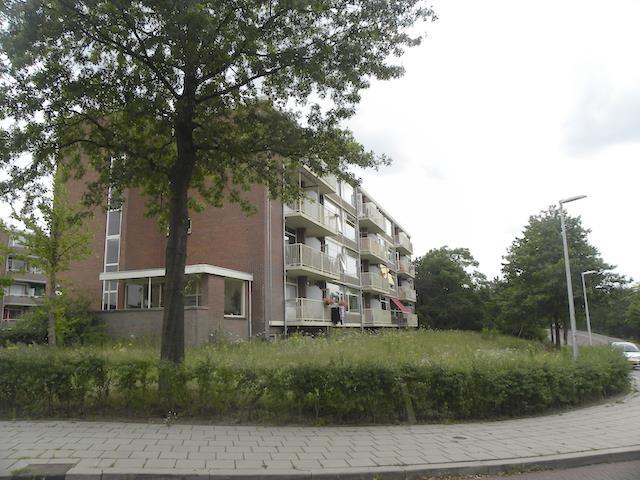 Lange Heul, Bussum