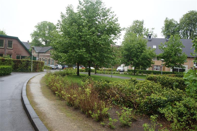 Lindenheuvel, Arnhem